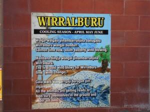 wirralburu